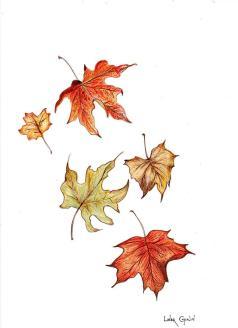 leaves20